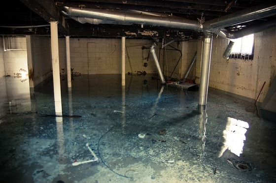 how much damage water can do to a basement